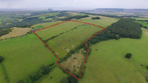 View Full Details for 28 ACRES @ LOXTON - EAID:hollismoapi, BID:11