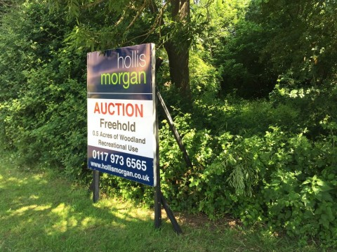 View Full Details for 0.5 ACRES OF WOODLAND - NAILSEA - EAID:hollismoapi, BID:21