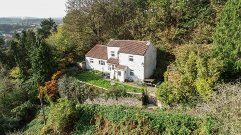 View Full Details for SECRET WOODLAND COTTAGE - EAID:hollismoapi, BID:11