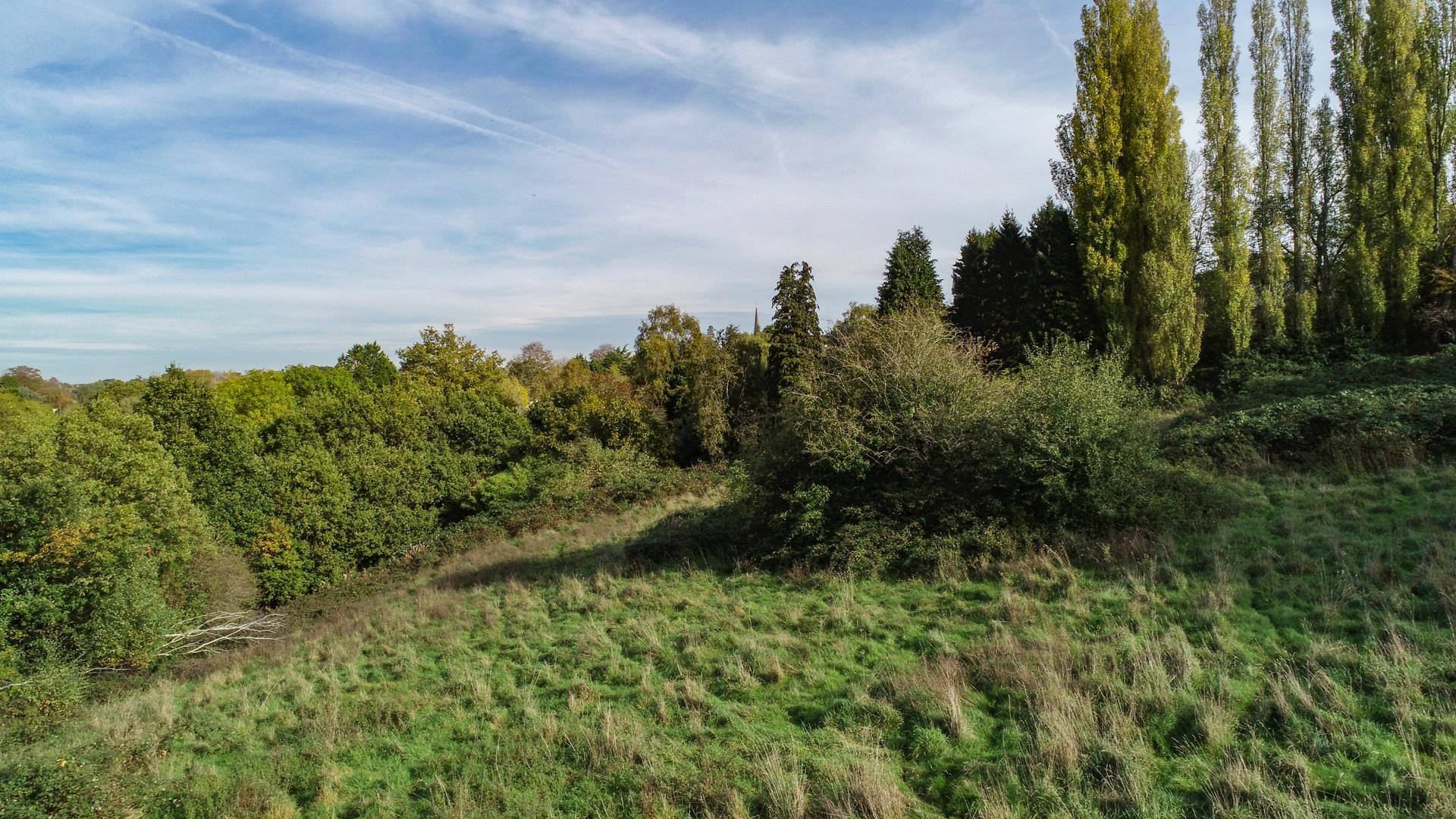 Images for 4.7 ACRES - SNEYD PARK EAID:hollismoapi BID:11