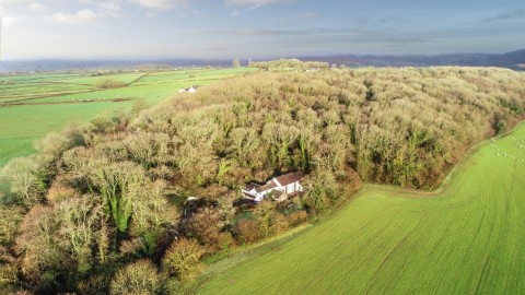 View Full Details for WOODLAND RETREAT IN 3 ACRES - PENHOW - EAID:hollismoapi, BID:11