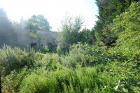 Images for DERELICT HOUSE IN 0.5 ACRES