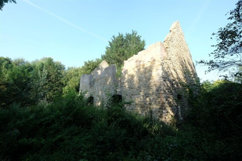 View Full Details for DERELICT HOUSE IN 0.5 ACRES                                        - EAID:hollismoapi, BID:21